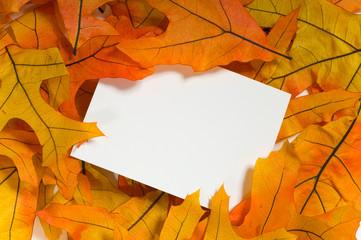 Autumn Notecard