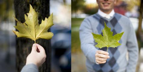 diptych man holding leaf