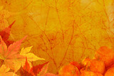 Thanksgiving theme textured background. poster
