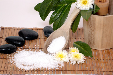 Wellness Sauna Steine