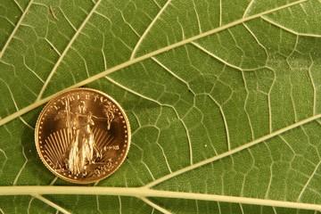 gold,coin