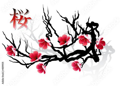 SAKURA branch and calligraphy
