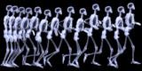 Lidské skelegon běh, radigraphy sekvence