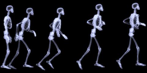 Human skelegon running