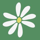 flor verde poster