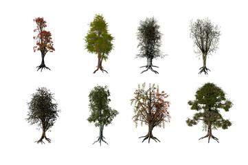 3D render Trees