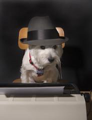 Dog on deadline