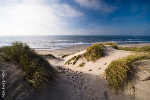 canvas print picture dunes and ocean