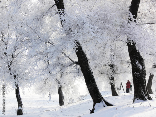 Winter in China, Wusong Island.