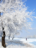 Fototapety Winter in China, Wusong Island.
