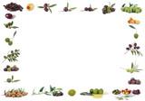 cornice di olive poster