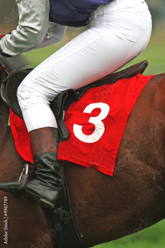 horse and jockey at race-course, up to the finish