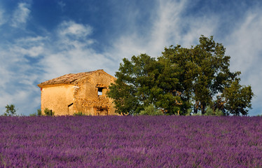 Old barn in Provence