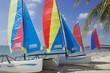 Key Biscayne Catamarans