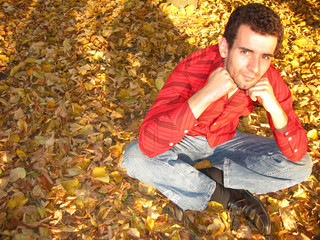On the Carpet of Yellow Leaves