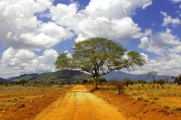Tsavo Est Kenii