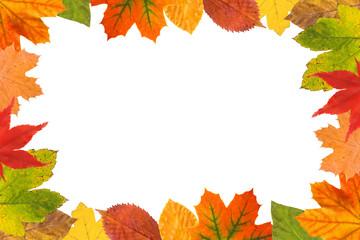 Herbstblätter Rahmen