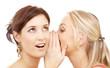 gossip - 5006192