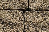 Closeup of pavement bricks poster
