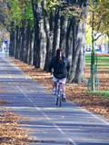 Cycliste sur piste cyclable, Paris, France poster