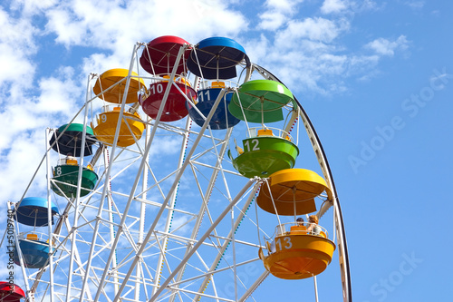 Popular attraction in park - a Ferris wheel - 5019740