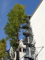 Escalier de secours en spirale derrière un arbre, Paris
