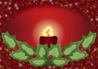 candelina agrifoglio