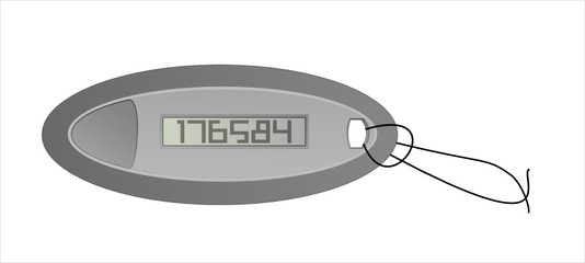 electronic security key