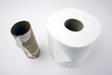 Abstract Conceptual Empty and Full Toilette Paper Rolls. poster