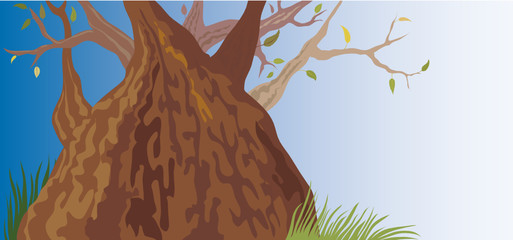 Old Tree (vector or XXL jpeg image)