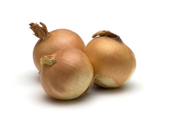 onion on white background