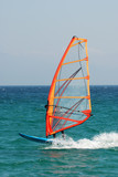 Windsurfer in action poster