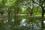 Sukhothai park poster