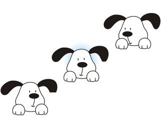 perro03
