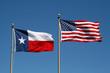 Texas and US Flag