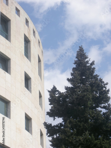 building and pine tree