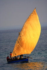 dhow sailing in the wind