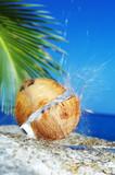 tropic splash - Fine Art prints