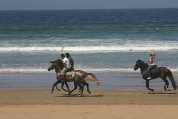 promenade à cheval sur la plage