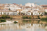 Old town of Corodoba with the Guadalquivir river in foreground poster