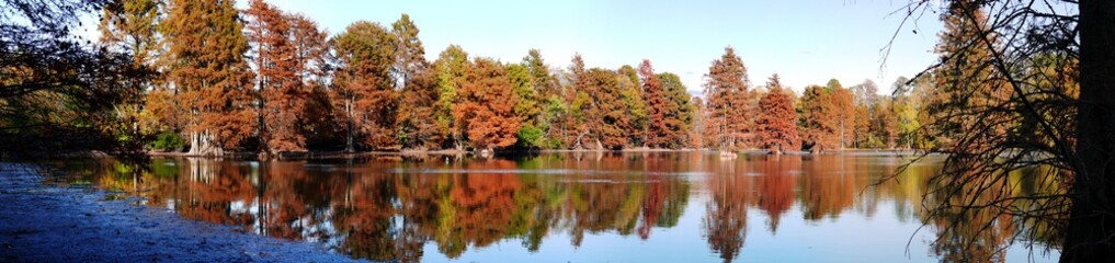 Panorama: Stumpy Lake - Virginia Beach