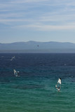 Windsurfing on the adriatic sea poster