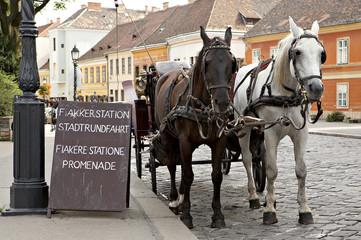 Horse-driven cab.