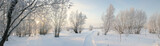 Panorama of freezing day. - Fine Art prints