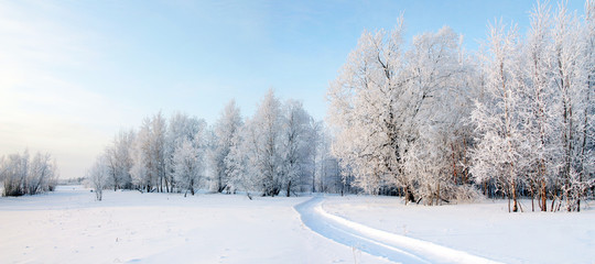 Panorama of freezing day.
