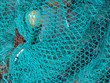 Blue Fish Net