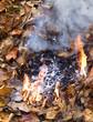 fire beginning