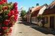 Gotland,Visby,Sweden, street scene