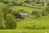 Fototapeta Welsh Barn