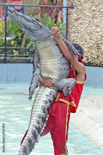 Tuinposter Krokodil Wrestling Match